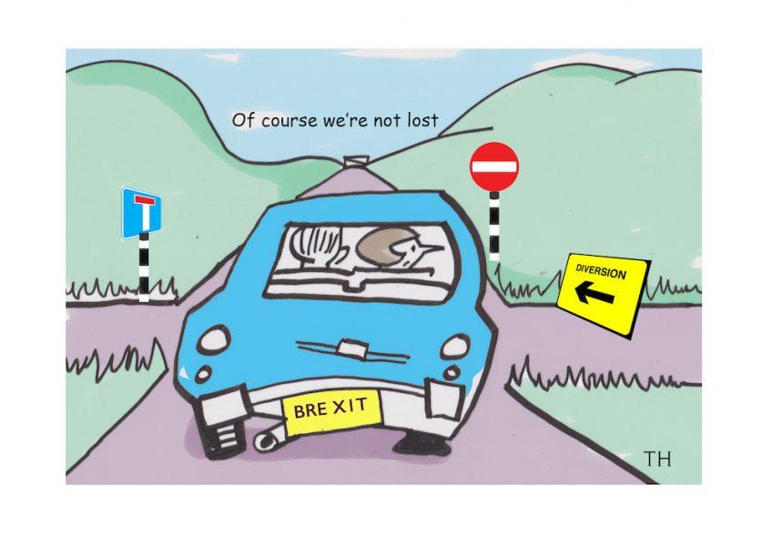 The Brexit roadmap cartoon
