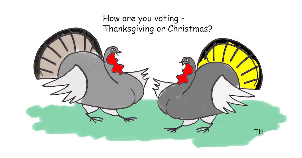 How are you voting cartoon
