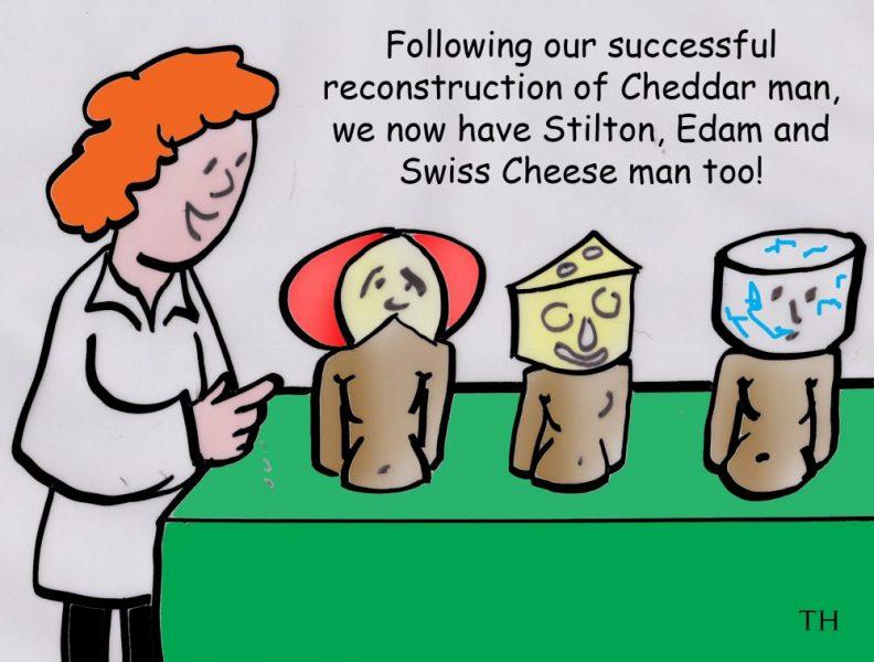 Cheddar man cartoon