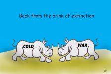 rhino extinction cartoon