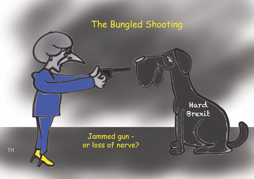 bungled Brexit cartoon
