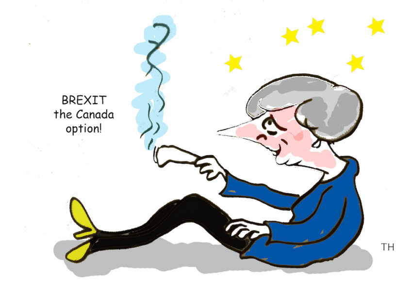 Brexit the Canada option