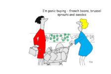 Brexit panic buying cartoon