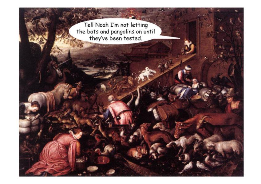 Noah's Ark by Memberger